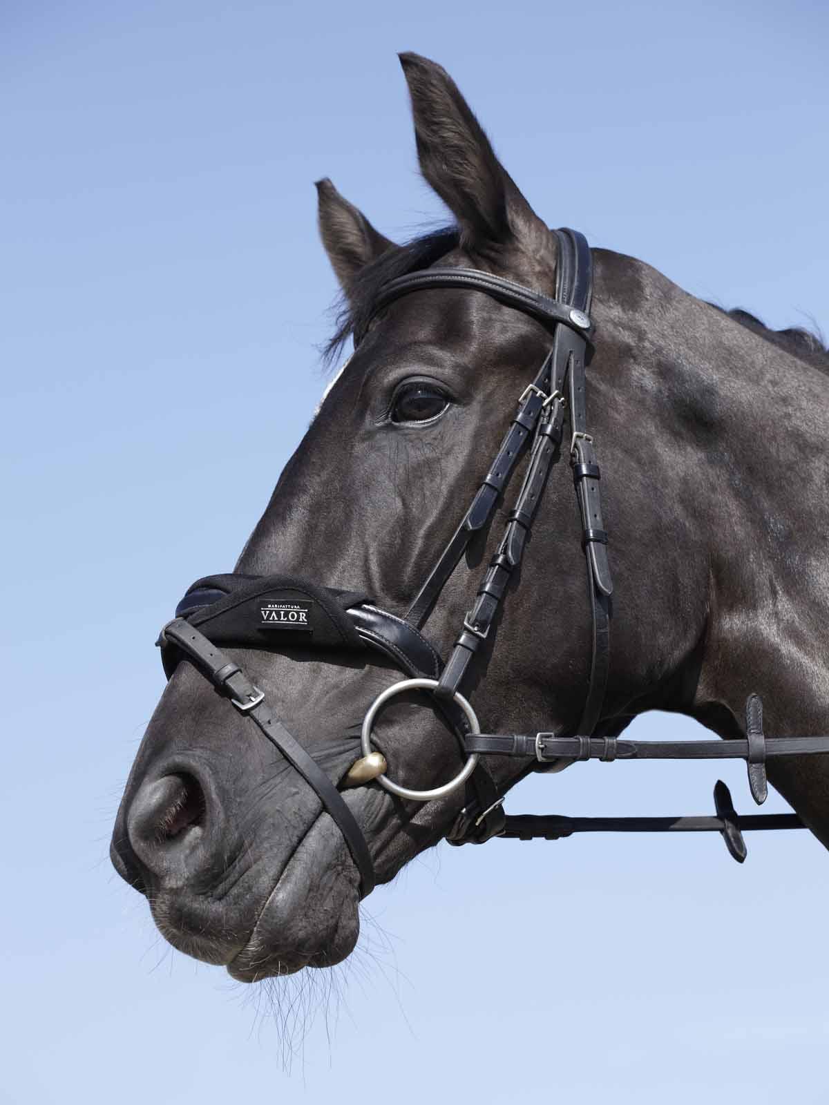 deerskin nose guard for horse