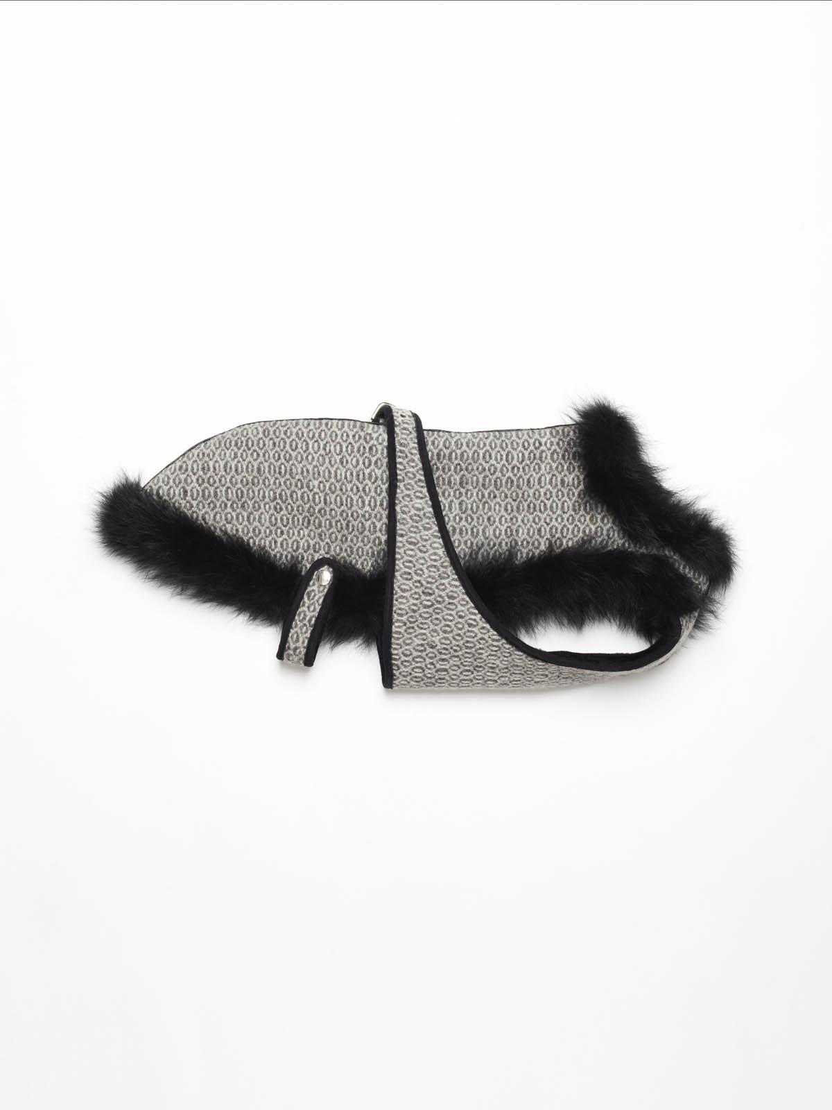 designer dog coats
