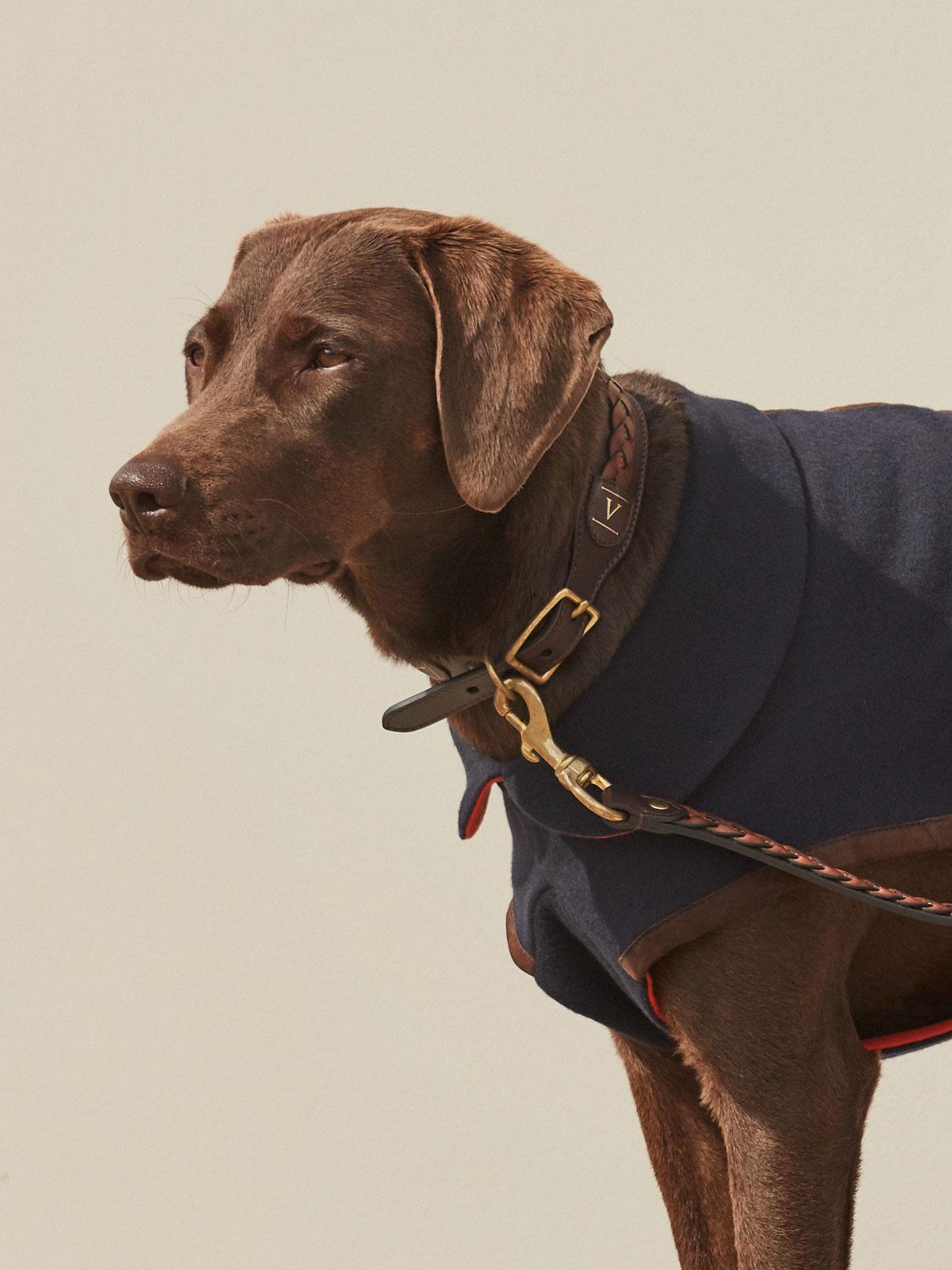 VALOR dog collar in leather FONDO
