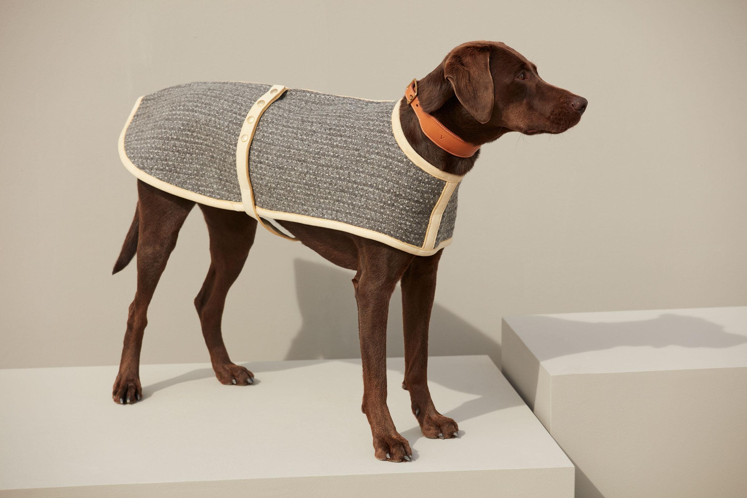 VALOR pure wool dog coat KALTERN
