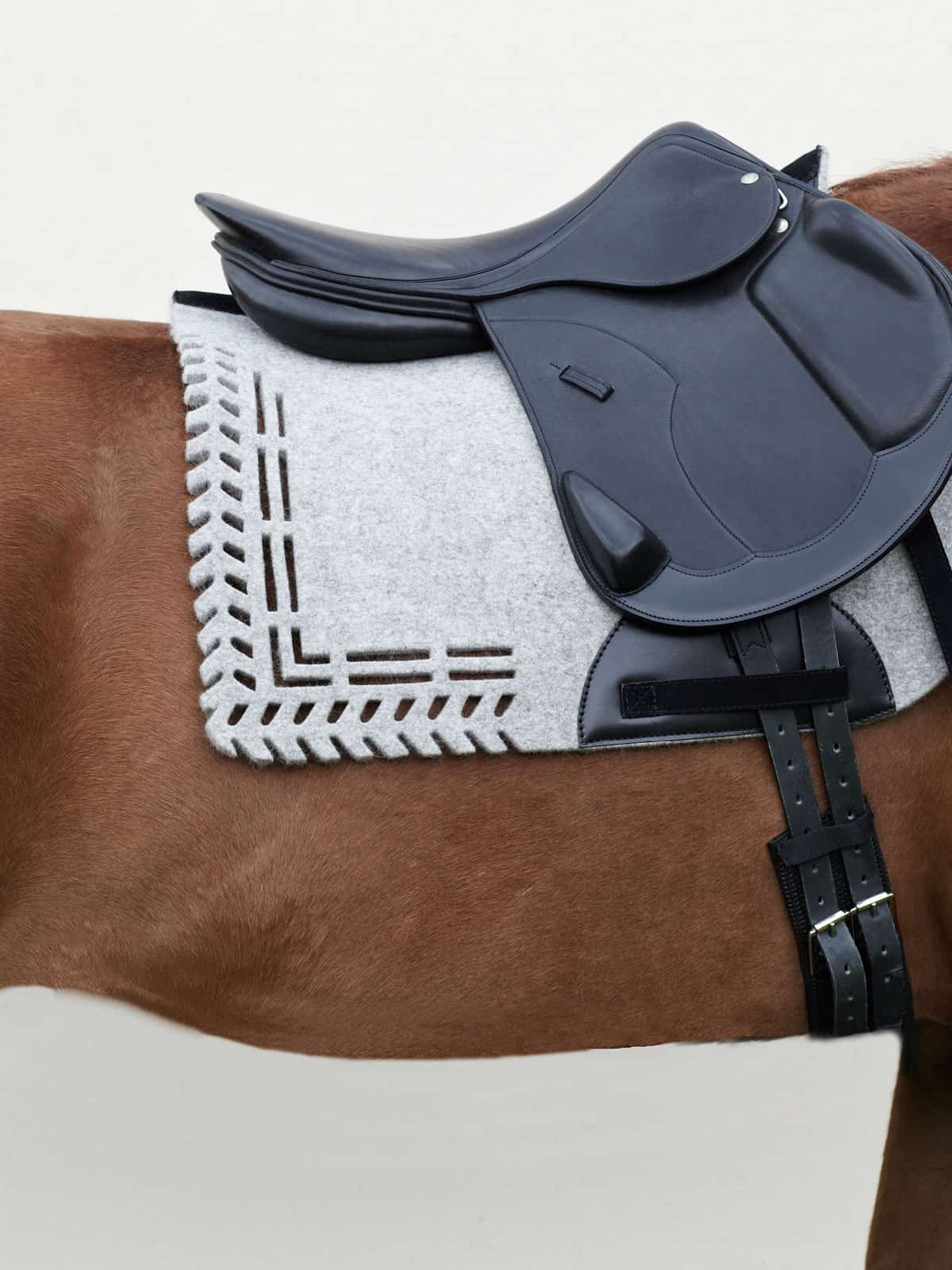 VALOR pure wool felt saddle pad ALGUND