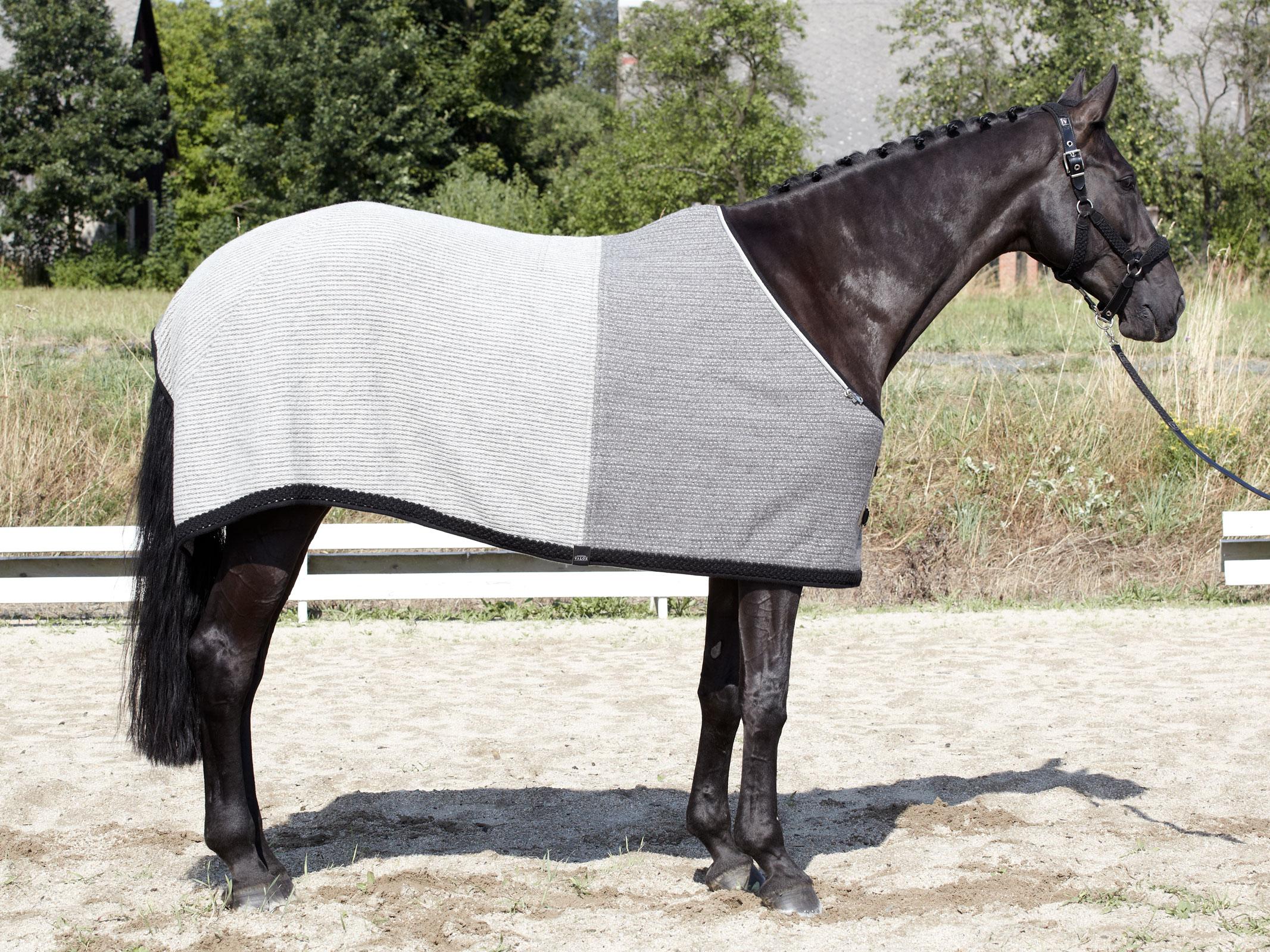 VALOR handwoven pure new wool rug BRIXEN