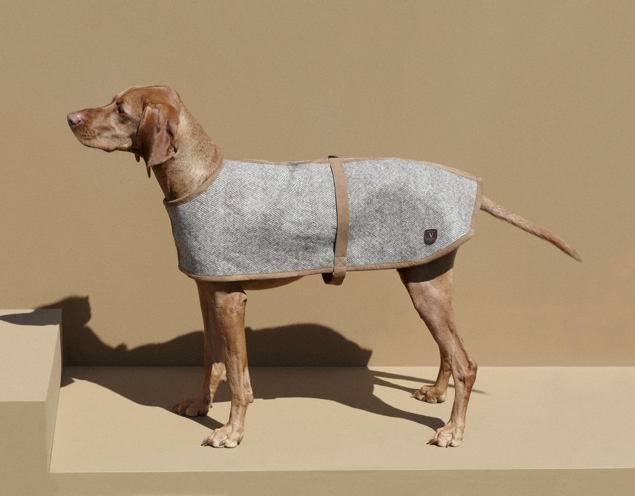 VALOR pure new wool dog coat KALTERN