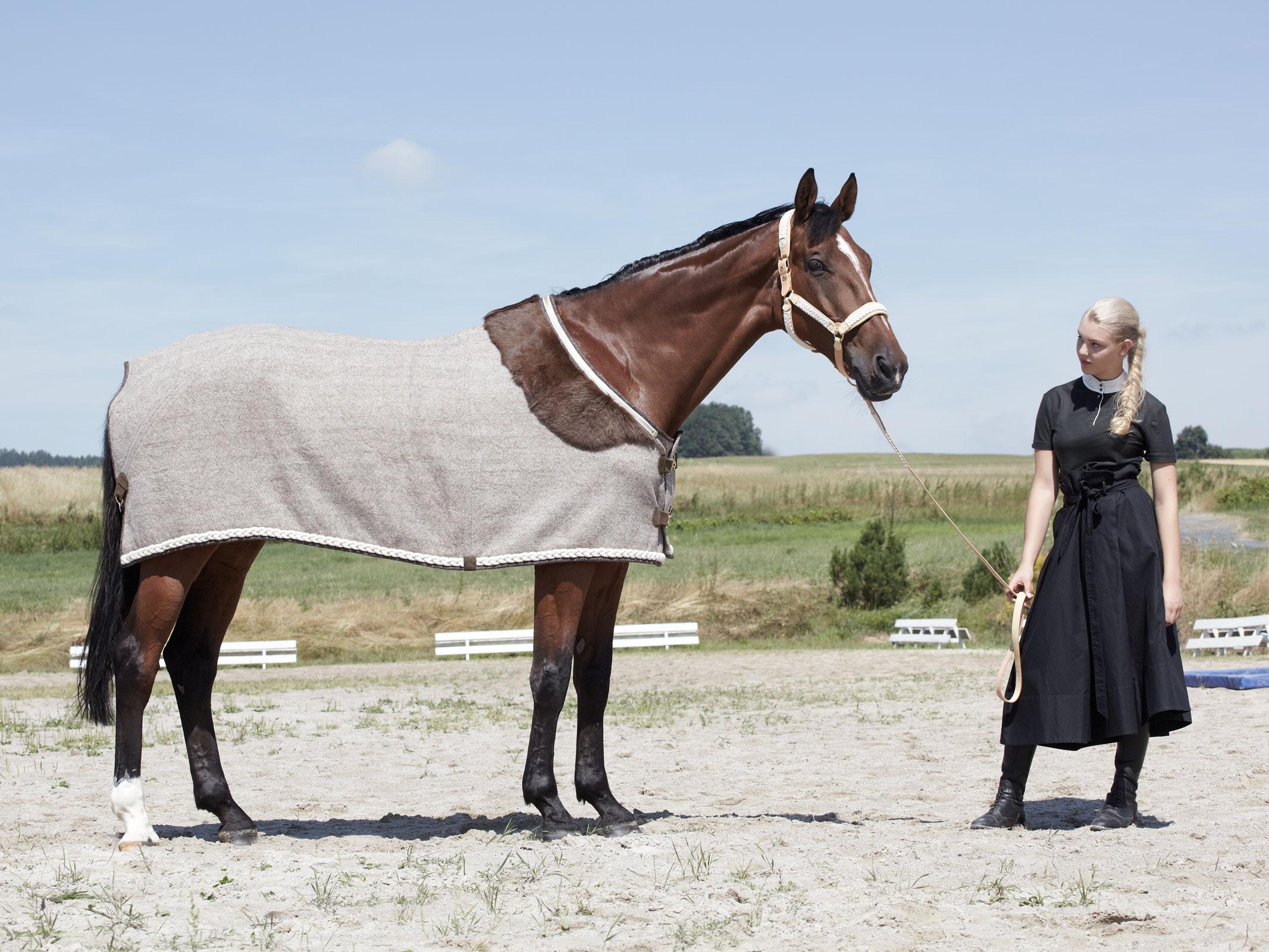 handwoven pure new wool horseware rugs