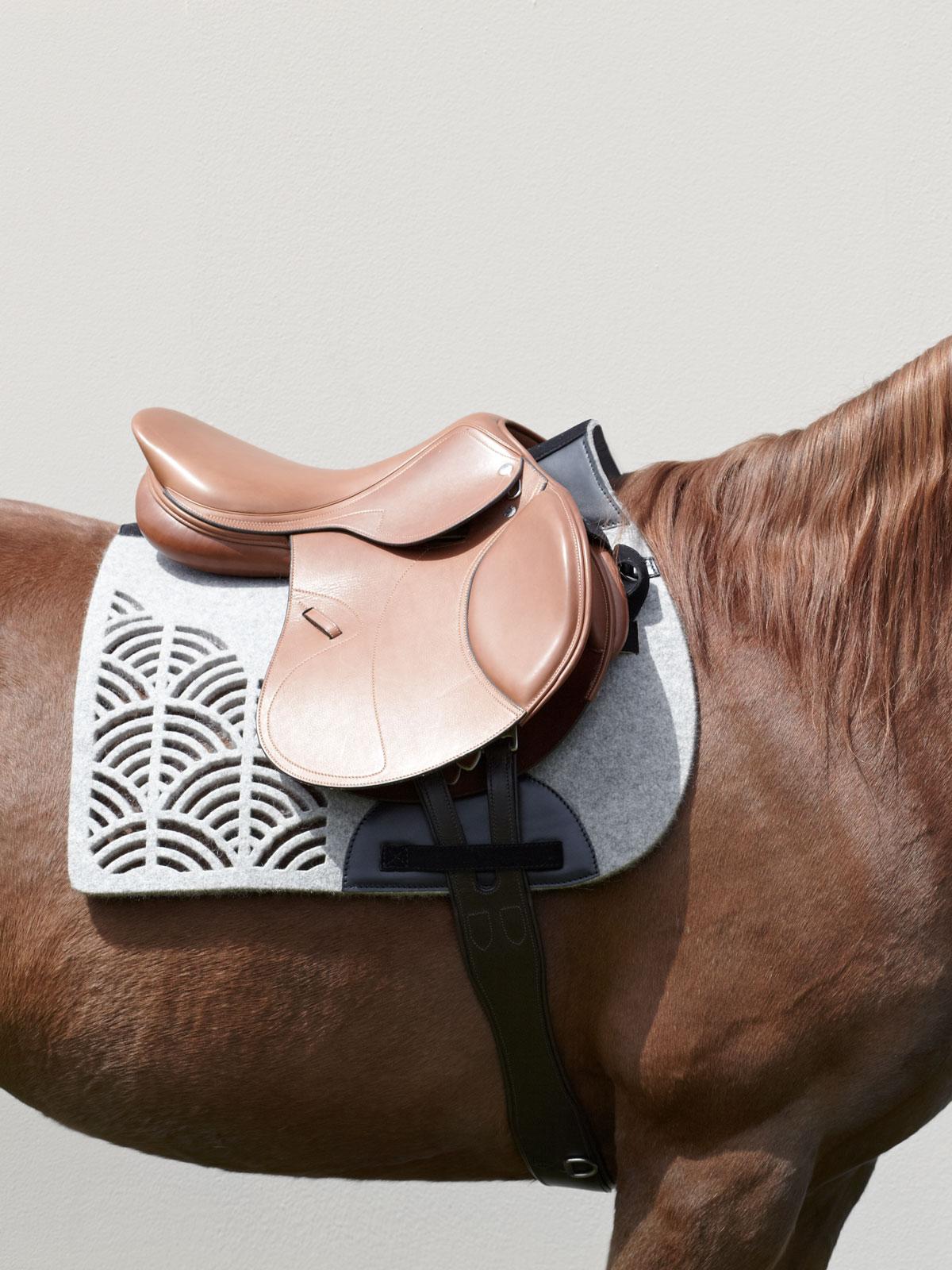 VALOR pure wool felt saddle pad STERZING