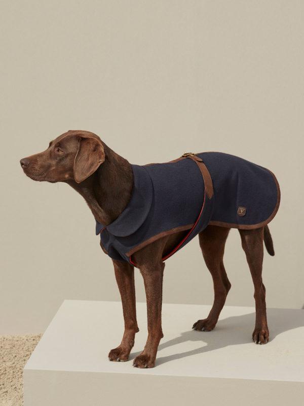 luxury cashmere dog coat