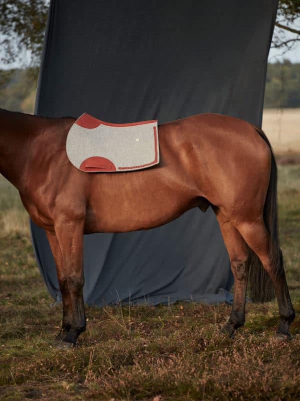 Jumping saddle pad
