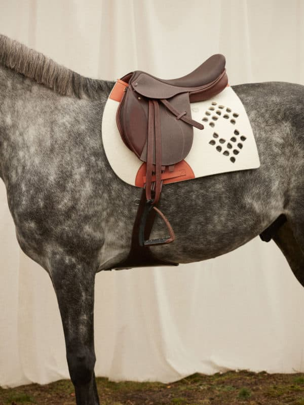 Cut-out saddle pad